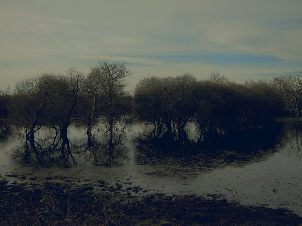 bleu-ciel-03