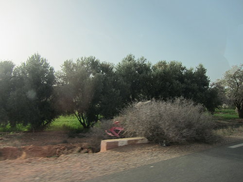 road-500 (106)
