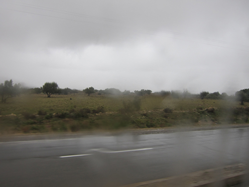 road-500 (122)