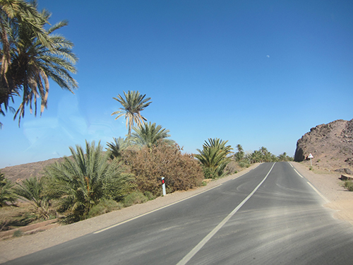 road-500 (44)