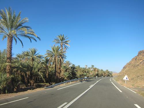 road-500 (65)