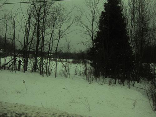 road-500 (8)