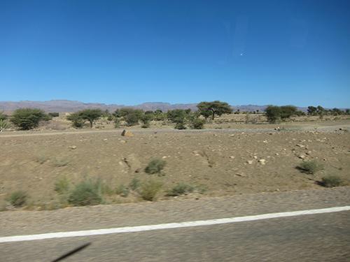road-500 (81)