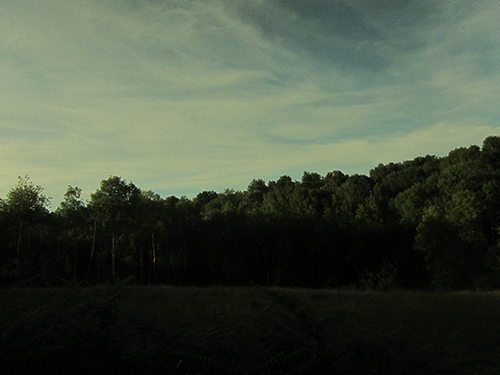 yvan-hydar-road-trip (108)