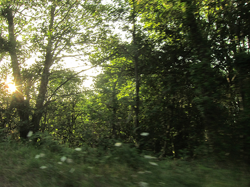 yvan-hydar-road-trip (111)