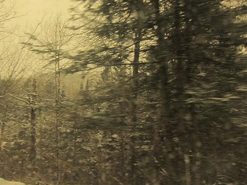 yvan-hydar-road-trip (159)